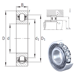 Component Description INA BXRE206 Needle Roller Bearings