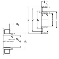 85 mm x 150 mm x 36 mm D NKE NJ2238-E-M6+HJ2238-E Cylindrical Roller Bearings