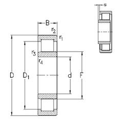 70 mm x 110 mm x 20 mm B_ NKE NU2316-E-TVP3 Cylindrical Roller Bearings
